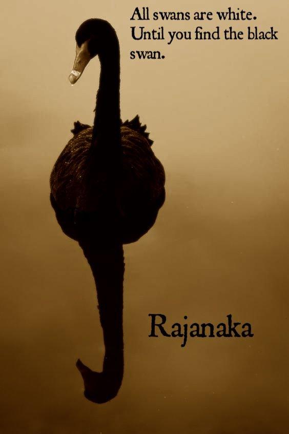 Blackswanrajanaka